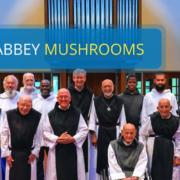 Mepkin Abbey Mushrooms